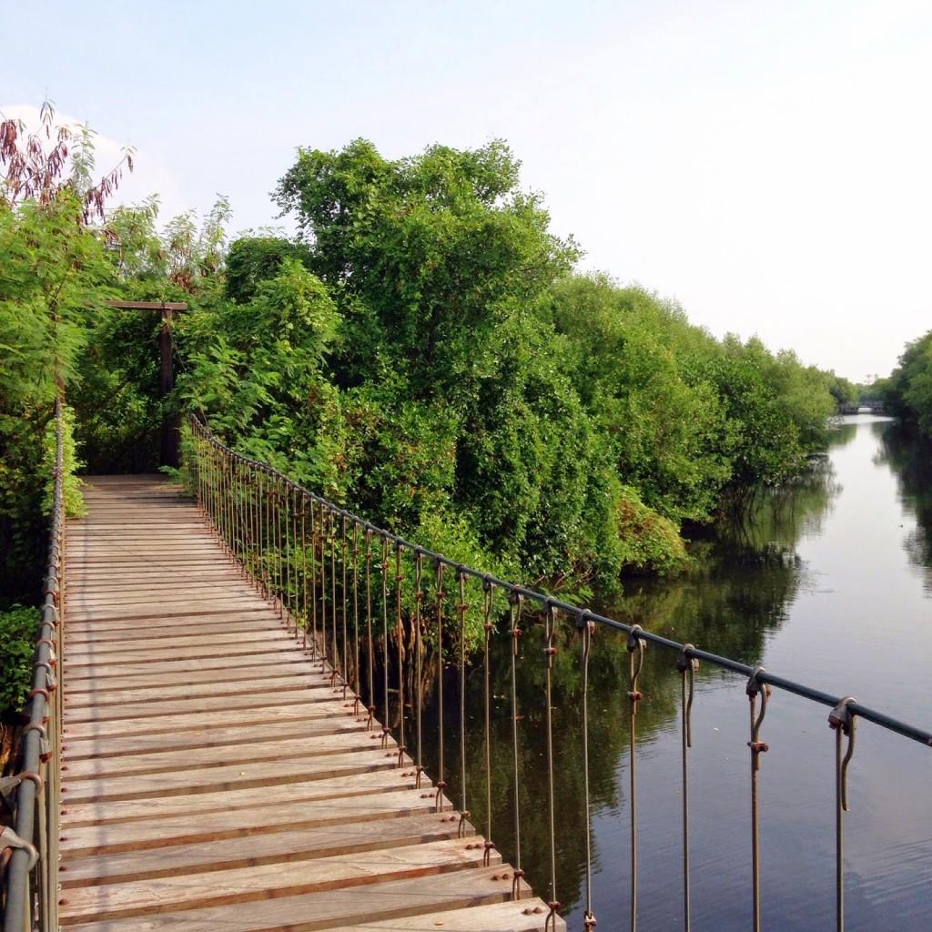 taman wisata alam Mangrove Angke Kapuk Daerah Khusus Ibukota Jakarta