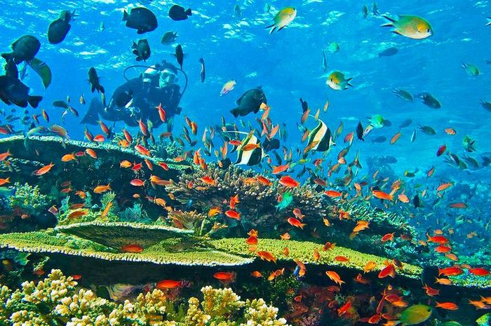 wisata indonesia ala luar negeri
